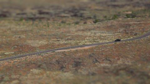 desert canyon car drive tilt shift Footage