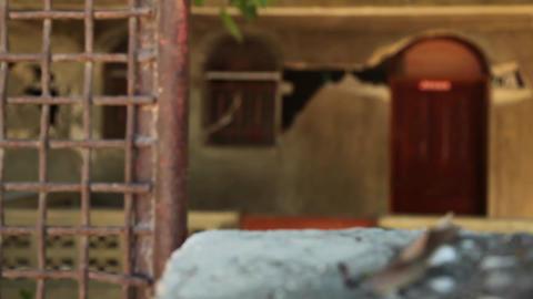 Earthquake Haiti damage Footage