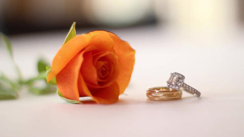 Wedding rings and orange rose Footage