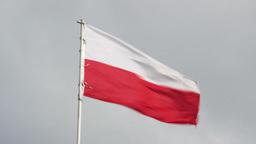 Polish flag Live Action