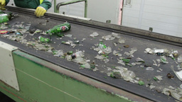 Sorting glass at recycling plant Live Action