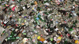Garbage - empty glass bottles and jars 2 Live Action