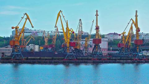 kind on freight marine port Footage