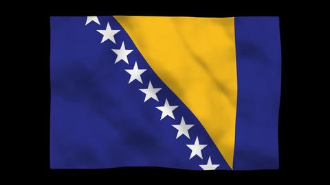 Flag A101 BIH Bosnia and Herzegovina Stock Video Footage