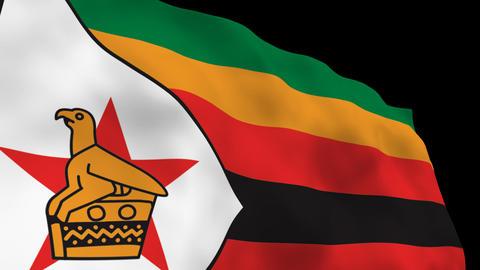 Flag B117 ZWE Zimbabwe Stock Video Footage