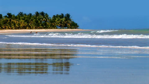 Gorgeous Sandy Brazilian Tropical Beach Stock Video Footage