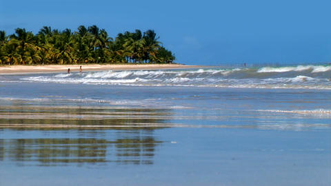 Gorgeous Sandy Brazilian Tropical Beach Footage