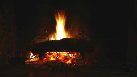 Time lapse of wood burning Stock Video Footage