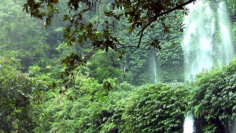 rain waterfall jungle Stock Video Footage