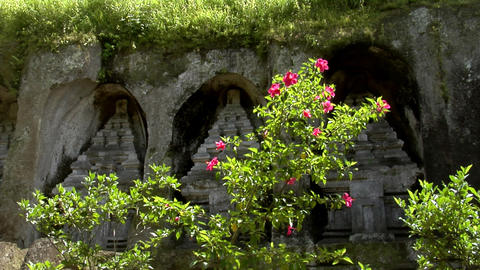 red flower maya temple Stock Video Footage