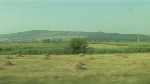 View of agriculture landscape from a moving train  Footage