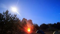 Bonfire on a moonlit night. Time Lapse. 4K Footage