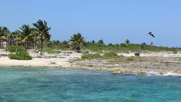 Costa Maya Beach 3 Footage