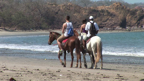 Riding Horses On Beach stock footage