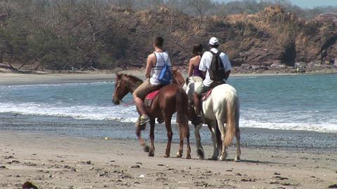 Riding Horses On Beach stock footage
