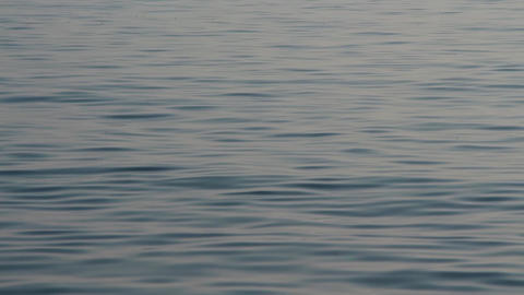 Sea Surface, Grey, Calm Waves stock footage