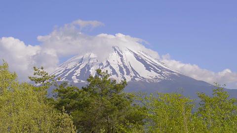 Spring Landscape of Mt.Fuji,Yamanashi,Japan Footage