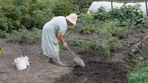 The Gardener 2 stock footage