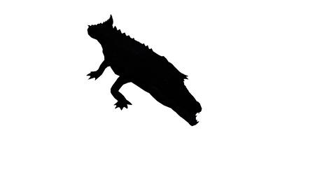 Crocodile open mouth attack hunting,Dangerous animals sketch silhouette Footage