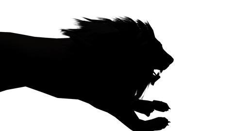 Lion run,Endangered wild animal wildlife running sketch silhouette Live Action