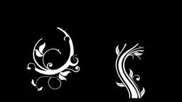Floral sets Animation