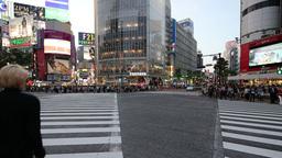 Shibuya Crossing, Tokyo, Japan stock footage