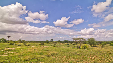 African Savannah Time Lapse stock footage