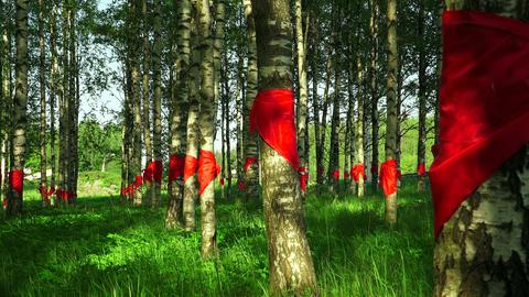 Red pioneer ties tied at birch. 4K Footage