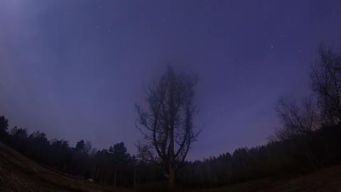 Star hides fog. Time Lapse. 4K Footage