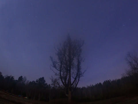 Star hides fog. Time Lapse. 640x480 Footage