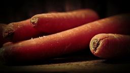 Carrots Footage