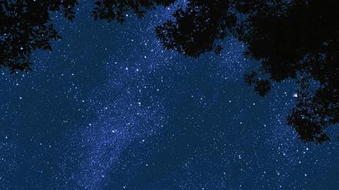 Night Stars Footage