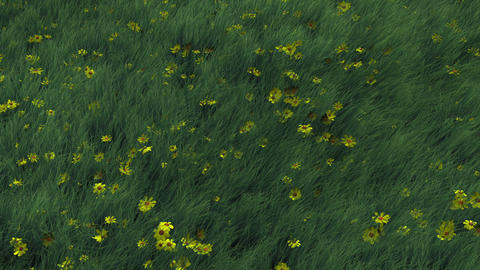 Grass and Flowers Blowing in Wind Animation