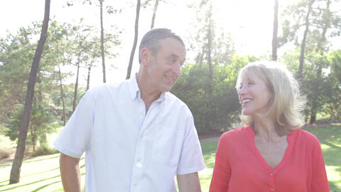 Romantic Senior Couple Holding Hands As They Walk  stock footage