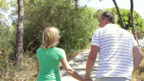 Rear view of romantic senior couple holding hands  Footage