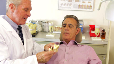 Dentist Showing Male Patient Model Of Jaw Bone stock footage