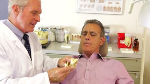 Dentist Showing Male Patient Model Of Jaw Bone Footage