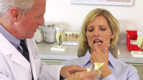 Dentist Showing Male Patient Model Of Jaw Bone Live Action