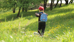 Summer the little boy runs through a meadow of dandelions Footage