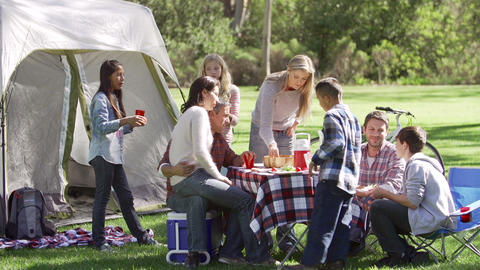 Two Families Enjoying Camping Holiday In Countrysi Footage