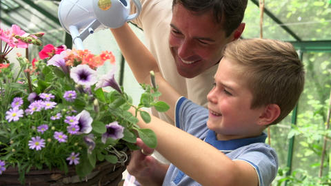 Father And Son Watering Plants In Greenhouse Footage