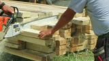 Chainsaw Cutting Lumber stock footage