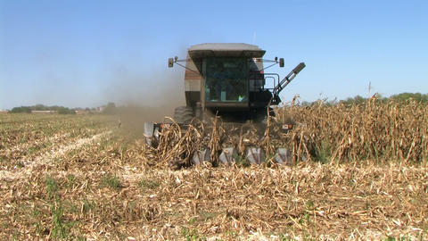 Combine Harvesting Corn 06 Stock Video Footage