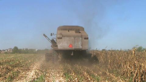Combine Harvesting Corn 04 Stock Video Footage