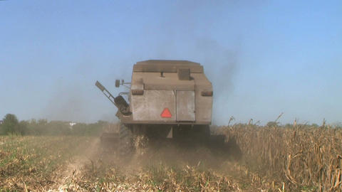 Combine Harvesting Corn 04 Footage
