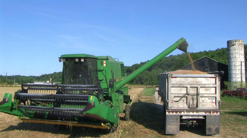 Combine Emptying Wheat 03 Stock Video Footage