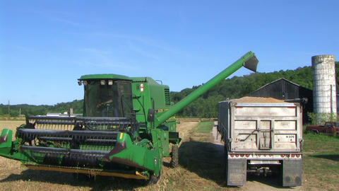 Combine Emptying Wheat 03 Footage