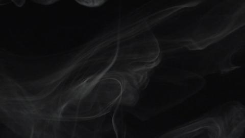 Smoke series: three anemone Stock Video Footage