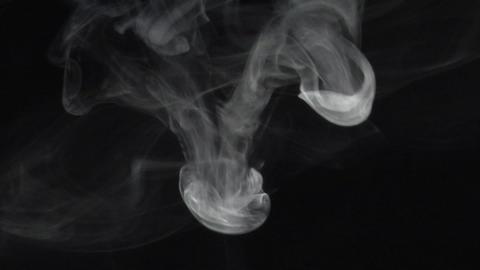 Smoke series: three anemone Footage