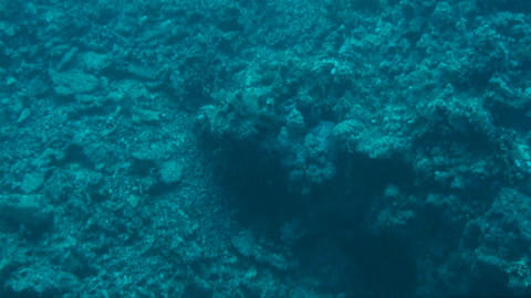 Destructed reef Stock Video Footage